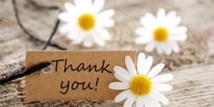 thankyou-daisies